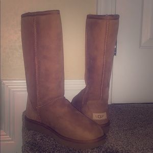 Brand new Uggs size 9
